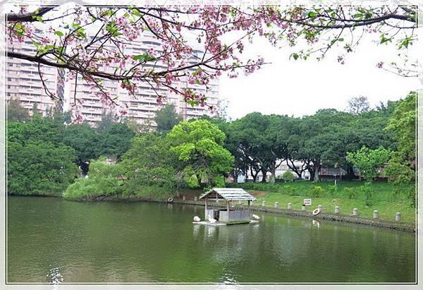交大竹湖_037.jpg