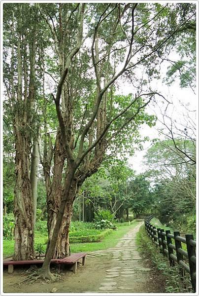 高峰植物園_041.jpg