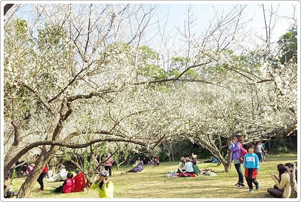 清華大學梅園_086.jpg