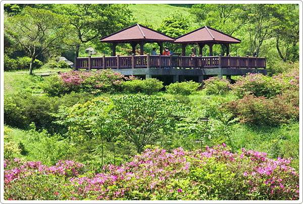 大屯自然公園_44.jpg