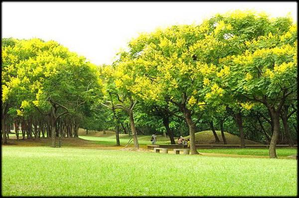 大溪埔頂公園_82.jpg