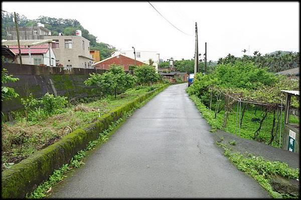 軟橋休閒步道_098.jpg