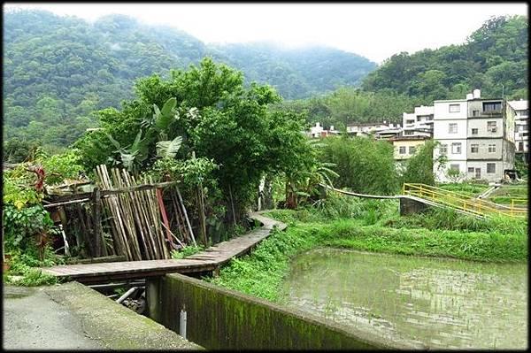 軟橋休閒步道_146.JPG