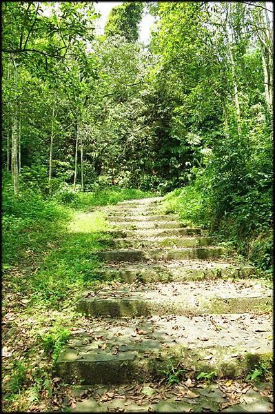 太和十三份步道_036.jpg
