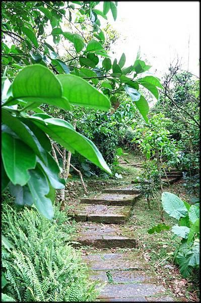 仁山植物園_019.jpg