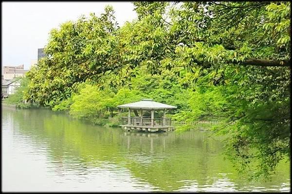高岡古城公園(3)_3428.jpg