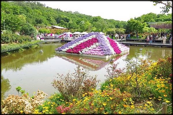 足利紫藤花卉公園(8)_4328.jpg
