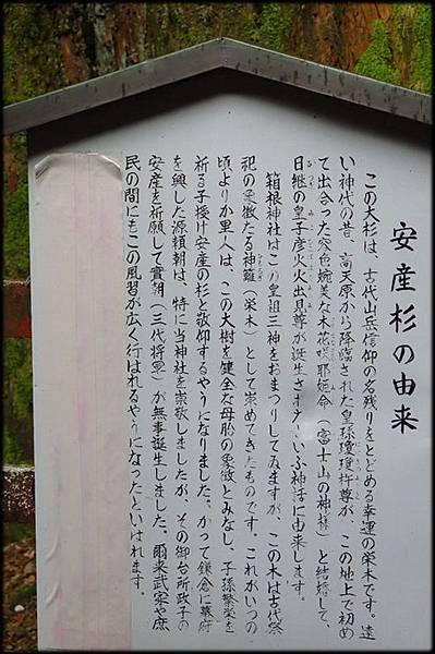 蘆之湖箱根海賊船(10)_4610.jpg