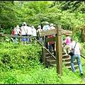 平湖森林步道_03.jpg