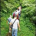 平湖森林步道_05.jpg