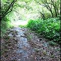 平湖森林步道_06.jpg