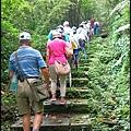 平湖森林步道_08.jpg