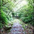 平湖森林步道_09.jpg