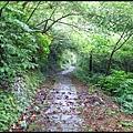 平湖森林步道_10.jpg