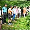 平湖森林步道_12.jpg