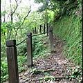 平湖森林步道_15.jpg
