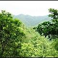 平湖森林步道_16.jpg