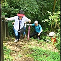 平湖森林步道_21.jpg