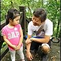 平湖森林步道_26.jpg