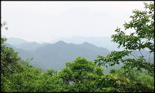 平湖森林步道_27.jpg