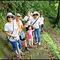 平湖森林步道_29.jpg