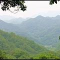 平湖森林步道_31.jpg