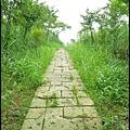 平湖森林步道_33.jpg