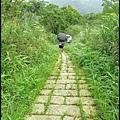 平湖森林步道_35.jpg