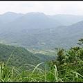 平湖森林步道_38.jpg