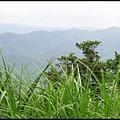 平湖森林步道_39.jpg