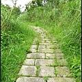 平湖森林步道_41.jpg