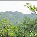 平湖森林步道_43.jpg