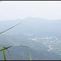 平湖森林步道_46.JPG