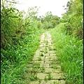 平湖森林步道_49.jpg