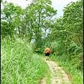 平湖森林步道_50.jpg