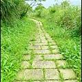 平湖森林步道_53.jpg