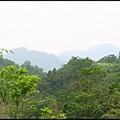 平湖森林步道_62.jpg