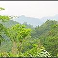平湖森林步道_63.jpg