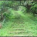 平湖森林步道-1_024.jpg