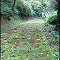 平湖森林步道-1_025.jpg