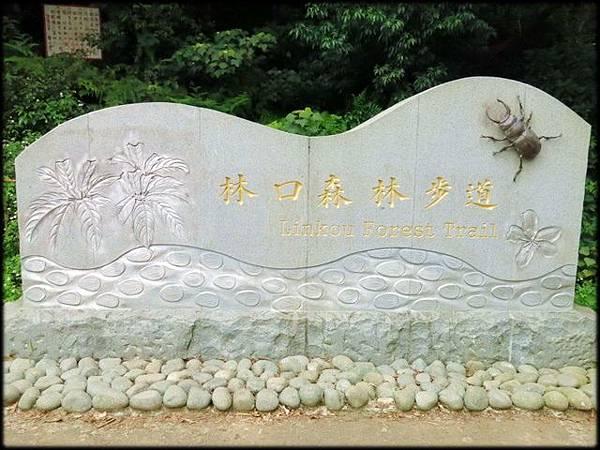 林口森林步道_001.1.jpg
