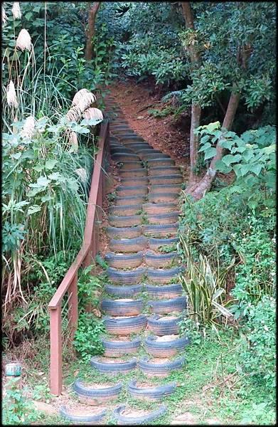 林口森林步道_001.2.jpg
