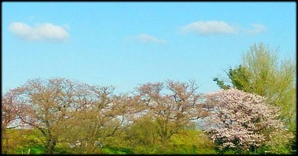 日本旅遊手機版_007.jpg