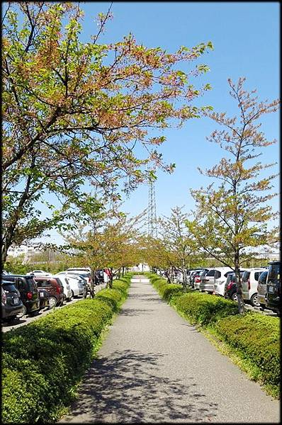 新潟傳奇(4)_145.jpg