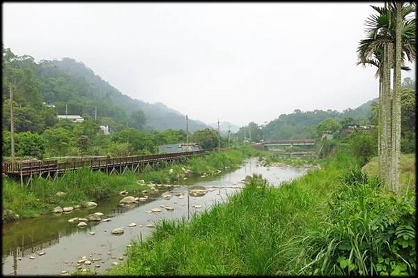 新店溪觀魚步道_091.jpg