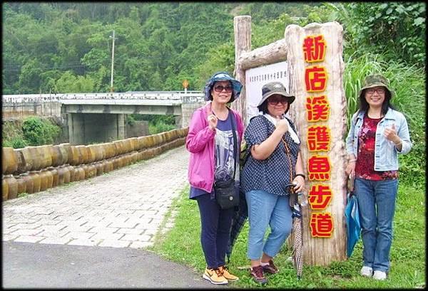 新店溪觀魚步道-1_010.jpg