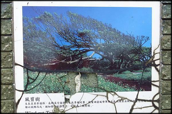 富貴角公園_022.jpg