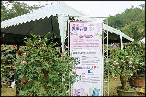 新埔花園_218.jpg