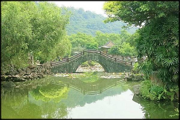 雙溪公園大王蓮_017.jpg