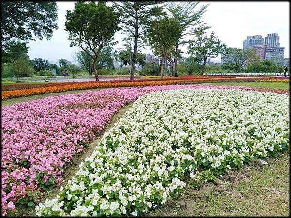 古亭河濱公園-1_006.jpg